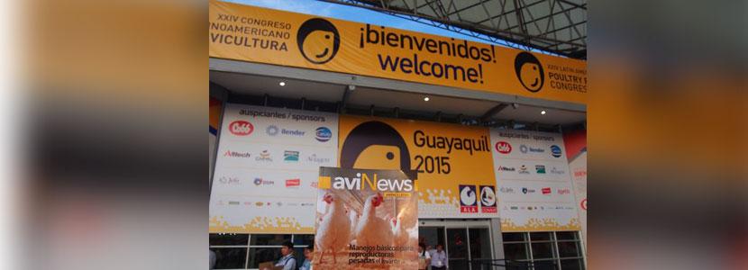 avinews-america-latina