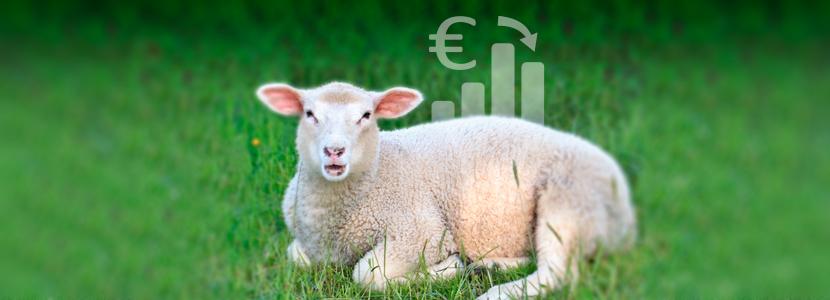 costes de producción de corderos
